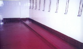 Specialist Hygienic Coating System applied to various substrates for ease of cleaning and ongoing maintenance.